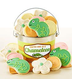 You're One in a Chameleon Cookie Pail Thank You Cookies, Cut Out Cookies, Cookie Frosting, Buttercream Frosting, Frosted Cookies, Cookie Packaging, Special Flowers, Flower Shape, Decorated Cookies