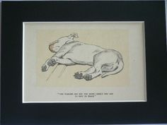 BULL TERRIER DOG Vintage mounted 1934 Cecil Aldin dog plate print Unique Birthday Christmas Thank you dog lover gift by Hollysprints on Etsy