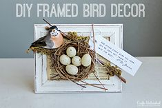 Think Spring: Simple Framed Bird Decor