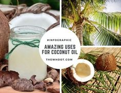 Amazing Coconut Oil Uses And Benefits
