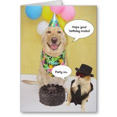 34 best funny pet greeting cards images on pinterest funny animal funny birthday card m4hsunfo