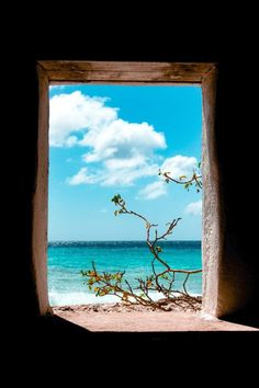 Bonaire | Inspiration 4 Motivation