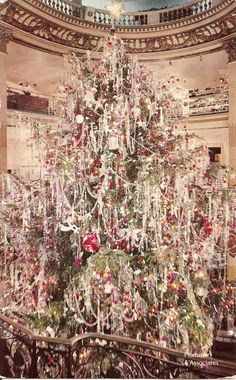 Christmas Tree - 1950's....remember the icicle's!!!! My mom would make me hang 1 strand at a time!!!!!