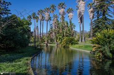 Botanic Garden of Ajuda
