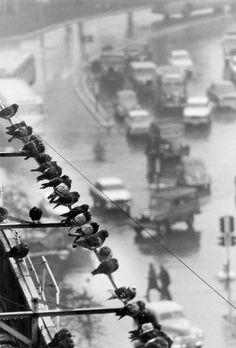avenida grde julio, buenos aires, june 28, 1962 ©andré kertész