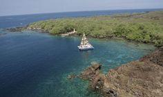 Best Kona Hawaii Snorkel Cruise - Snorkel the Big Island of Hawaii's Kealakekua Bay and other South Kona snorkeling locations with Fair Wind! | Fair Wind Tours