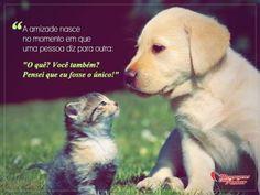 """A amizade nasce no momento em que uma pessoa diz para outra: """"O quê? Você também? Pensei que eu fosse o único!"""""""