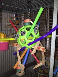 Parrot's Workshop ... Toys made EZ to increase your Parrot's intelligence.