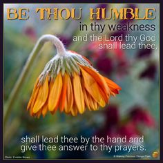 Be thou humble in thy weakness and the Lord thy God shall lead thee, shall lead thee by the hand and give thee answer to thy prayers.