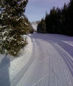 Beaver Creek Ski Area--I am a newly minted Nordic Skier!
