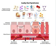 """Leaky Gut Treatment 