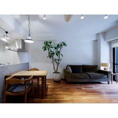 taka55さんの、足場板テーブル,TRUCK FUNITURE,FKソファ,TRUCK,RC広島支部,植物,ゴムの木,リビング,のお部屋写真