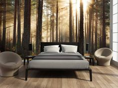 The Dirty Facts About Bedroom Decor Mural Wallpaper House Design House Interior Forest Wallpaper You will have the ability to unwind and feel good in your new room full of wonderful furniture.