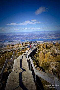 Boardwalk, Mt Wellington, Tasmania.