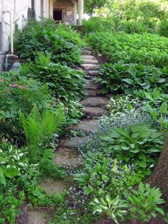 Kitchen Garden Walkway For The Shady Areas