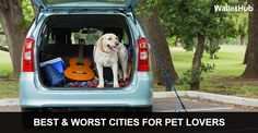 If you are a pet lover then you'll love Reno! We recently made WalletHub's 2015 list for Best Cities for Pet Lovers.