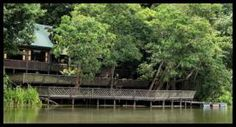 TREC eco camp in near Kinabatang river