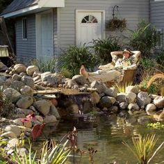 1000 Images About Diy Ponds Water Features On