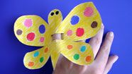 for butterfly party
