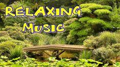 Relaxing Music, Piano Music, Feng Shui, Reiki, Tarot, Meditation, Health Fitness, Detox, Youtube