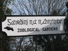 Dublin Zoo opende de poorten in 1831. Fraai gelegen in het Phoenix Park. In het 8 km2 grote Phoenix Park zijn sport- en recreatievelden, plantsoenen, vijvers, monumenten, een burcht en de woning van de president van Ierland. Het Phoenix Park is het grootste stadspark van Europa, onstaan in 1660 uit de koninklijke jachtterreinen.