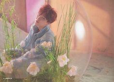 📸 Photocards from Armypedia Event [ Yoongi ] cr. Namjoon, Yoongi, Seokjin, Taehyung, Daegu, K Pop, Jimin, Bts Concept Photo, Bts Love Yourself