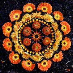 Beautiful Flower Mandalas - Imgur
