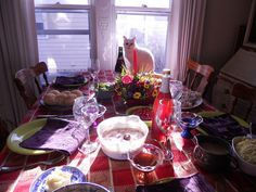 You continue to  Talk about Thanksgiving and Now I want gravy 9 Haiku Poems from Deep-Thinking Cats | Catster