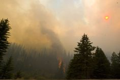 Wildfires really are on the rise in West, Utah researchers say. Geographers link climate change to more, bigger fires in the West. These findings don't support the popular notion that the federal government has done a poor job managing national forests in the past two decades.