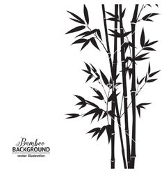 Bamboo bush vector by Kotkoa - Image #3851941 - VectorStock