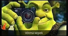 """Shrek's Cringe Compilation"""" refers to image macros of the character Shrek taking a photograph captioned with variations of the phrase """"*SNAP* Yep. This one's going in my cringe compilation. Shrek Memes, Dankest Memes, Funny Memes, Hilarious, Jokes, Funny Vidos, Stupid Funny, Reaction Pictures, Funny Pictures"""