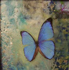 Butterfly Encaustic | Flickr - Photo Sharing!