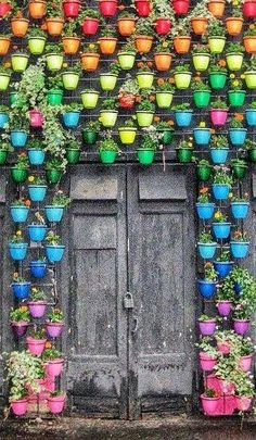Rainbow pot living wall