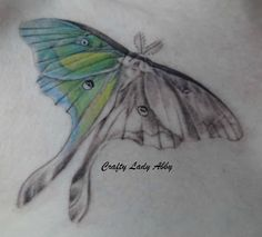 One of the best Luna Moth tattoos I have seen...true to life, not a cartoon
