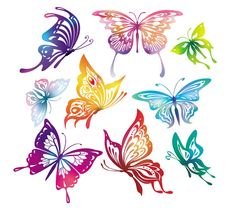 Butterfly Vector - Free Vector Site | Download Free Vector Art, Graphics