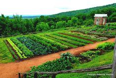 Image result for fine gardening design