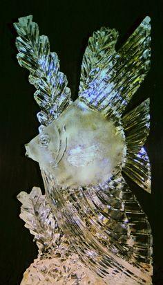 Ice Impressions, Angelfish Ice Sculpture