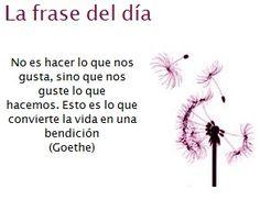 La frase del día de Goethe: No es hacer lo que nos gusta, sino que nos guste lo que hacemos. Esto es lo que convierte la vida en una bendición.