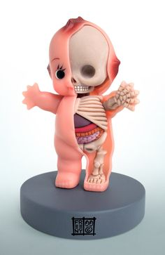 Kewpie... on the inside... I always thought dolls had bones and muscles. Finally proof.