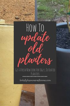 How To Easily Update Outdated Ceramic Pot Planters - Ceramic Planters, Planter Pots, Painted Baskets, Chalky Paint, Do It Yourself Projects, Easy Projects, Outdoor Living, Diy Crafts, Ceramics