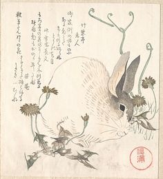Kubo Shunman (Japanese, 1757–1820). Hare and Dandelion?, probably 1820. The Metropolitan Museum of Art, New York. H. O. Havemeyer Collection, Bequest of Mrs. H. O. Havemeyer, 1929 (JP1951)