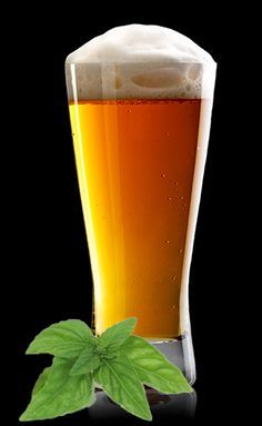 Homebrew Beer Recipe: Honey Basil Saison
