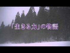 上戸彩が母親役!映画『おしん』特報