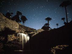 Copahue Neuquén, cerca de la Ruta 40, araucarias y estrellas patagónicas