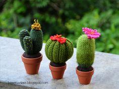 Airali design. Where is the Wonderland? Crochet, knit and amigurumi.: Amigurumi cactus #5