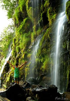 """""""La Seimeira"""" is a spectacular waterfall of over 30 meters located in the Asturian mountains of Los Oscos. (Spain) To get there, we just have to follow a wooded path from Pumares, a little traditional village. Learn more: http://www.touristeye.com/The-most-impressive-waterfalls-in-Spain-g-222992"""