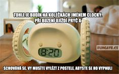 Funny Facts, Just Do It, Cooking Timer, Haha, Jokes, Cool Stuff, Pictures, Meme, Humor