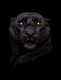 Linda a pantera do Zoológico! !! A Beth é super fofa e Pantera Negra é um Clush lindo e é o Alfa