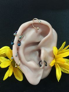 The Curated Ear Piercing Trend Ear Piercing Care, Types Of Ear Piercings, Ear Piercings Cartilage, Piercing Ring, Tragus, Black Earrings, Sterling Silver Earrings Studs, Stud Earrings, Ear Chain