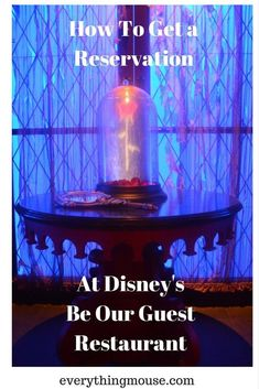 Disney World's Be Our Guest Restaurant is one of the most popular dining venues. Here is how to get a reservation ! #BeOurGuest #DisneyWorldRestaurants #DisneyWorldTips Disney World Deals, Disney World Secrets, Disney World Food, Disney World Restaurants, Disney World Magic Kingdom, Disney World Florida, Disney World Planning, Walt Disney World Vacations, Disney World Tips And Tricks